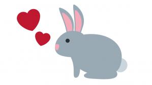 el conejo y el amor