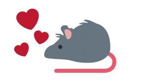 horoscopo rata y amor 2019