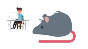 horoscopo rata y trabajo 2019