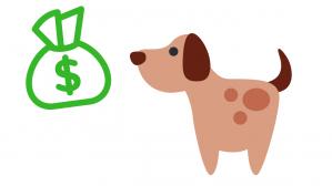 perro en el dinero