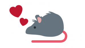rata y amor