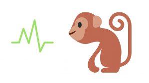 mono y salud
