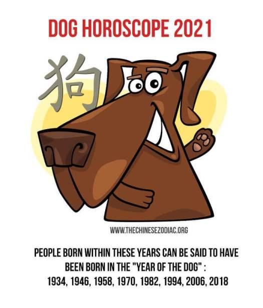 año del perro 2021 horóscopo